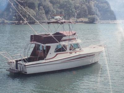 felix fully restored 1995.jpg