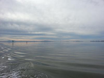 smooth waters.jpg