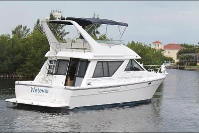 Older OA 42 or Newer Bayliner 3988, Feedback wanted