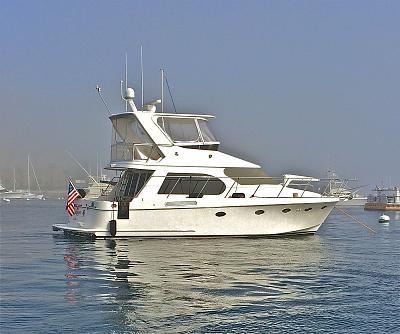 Click image for larger version  Name:Sandpiper at Catalina Island.jpg Views:38 Size:164.4 KB ID:91389