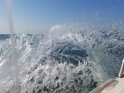 Click image for larger version  Name:chesapeake bay trip.jpg Views:14 Size:196.5 KB ID:92269