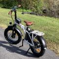 My electric bike with a gator in the background